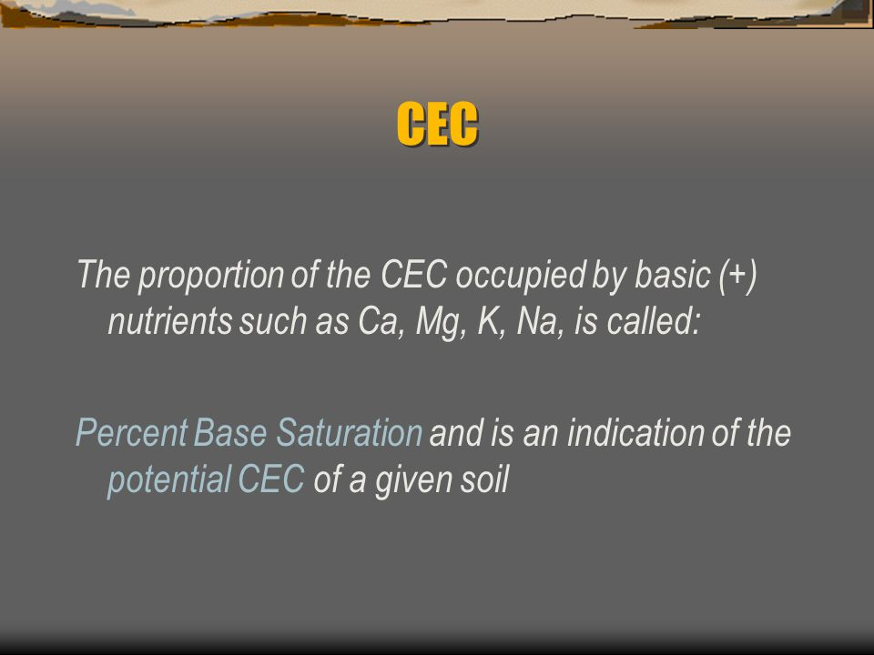 CEC The proportion of the CEC occupied by basic (+) nutrients such as Ca, Mg, K, Na, is called: