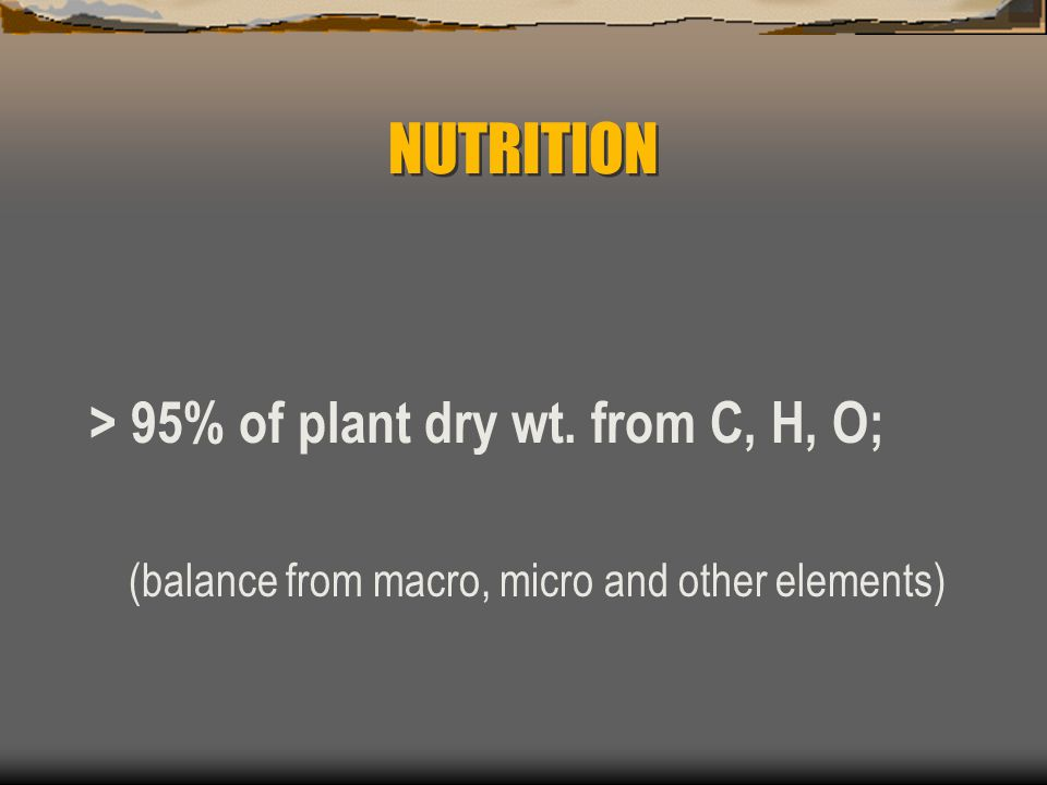 NUTRITION > 95% of plant dry wt. from C, H, O;