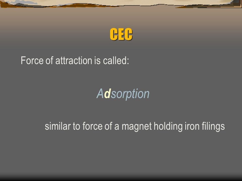 CEC Adsorption Force of attraction is called: