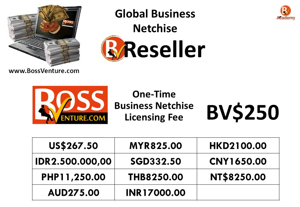 BV$250 Global Business Netchise One-Time Business Netchise