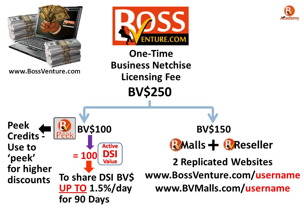 + BV$250 One-Time Business Netchise Licensing Fee Peek Credits -