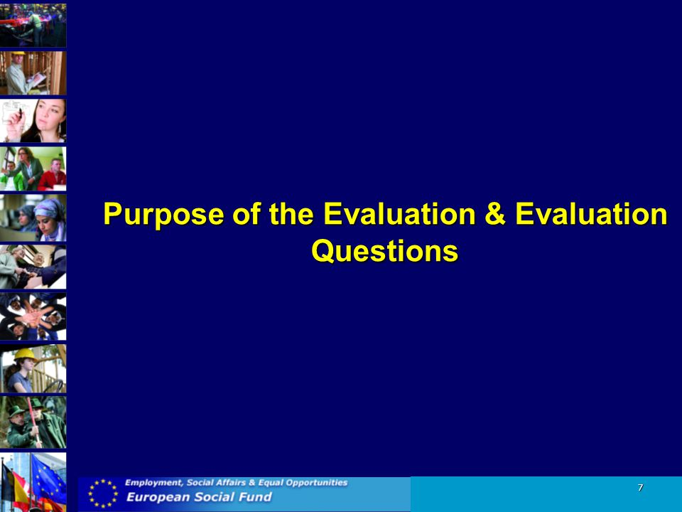 Purpose of the Evaluation & Evaluation Questions