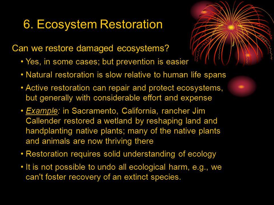 6. Ecosystem Restoration