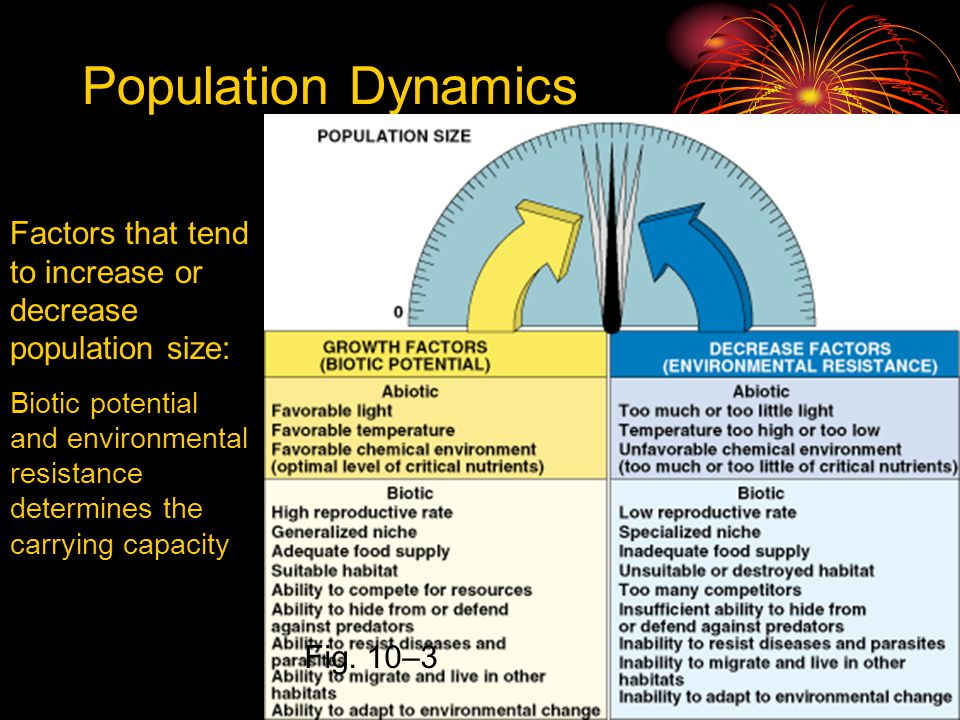 Population Dynamics Factors that tend to increase or decrease population size: