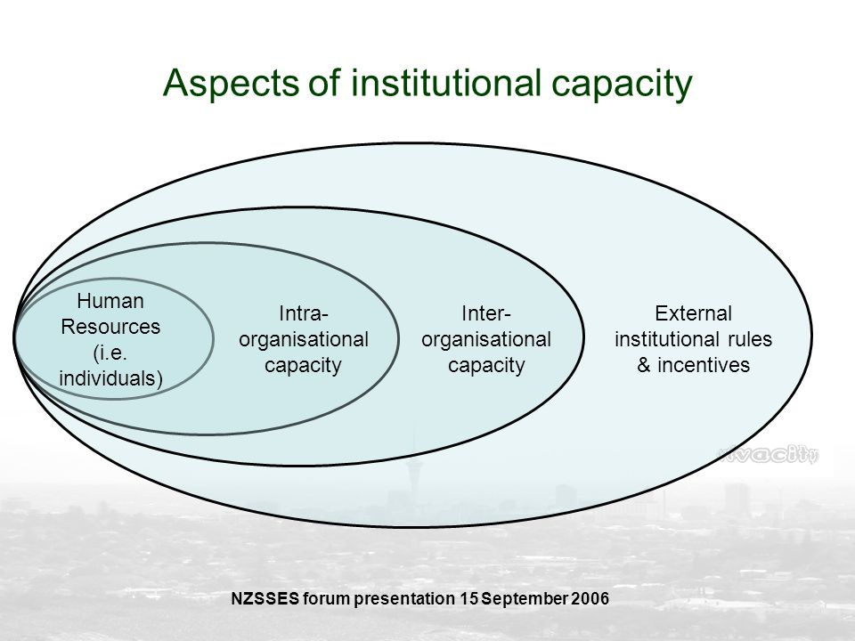 Aspects of institutional capacity
