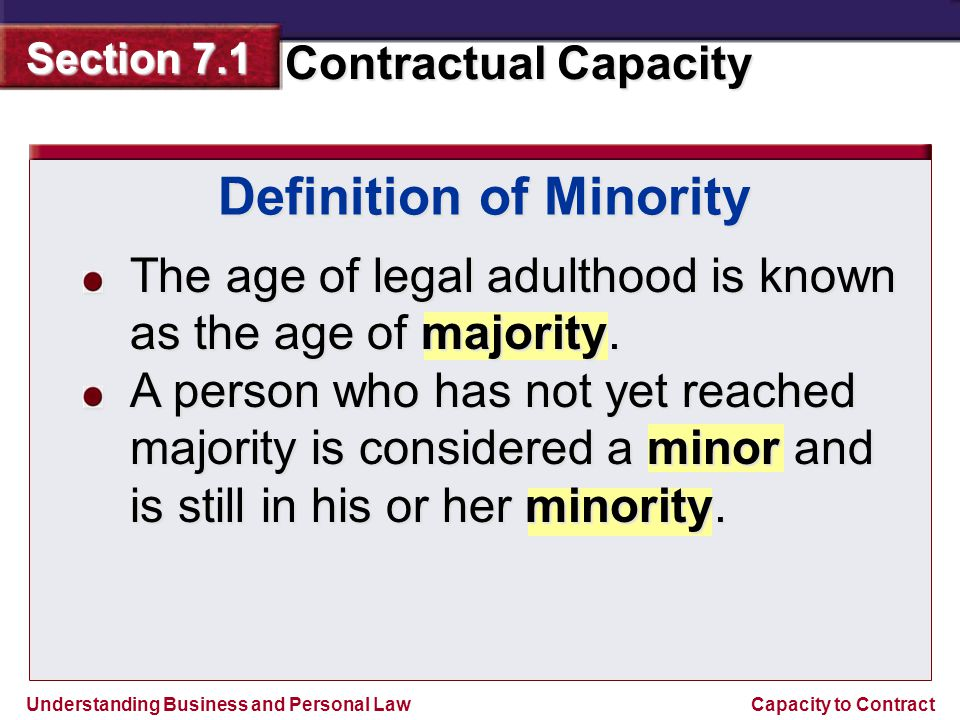 Definition of Minority