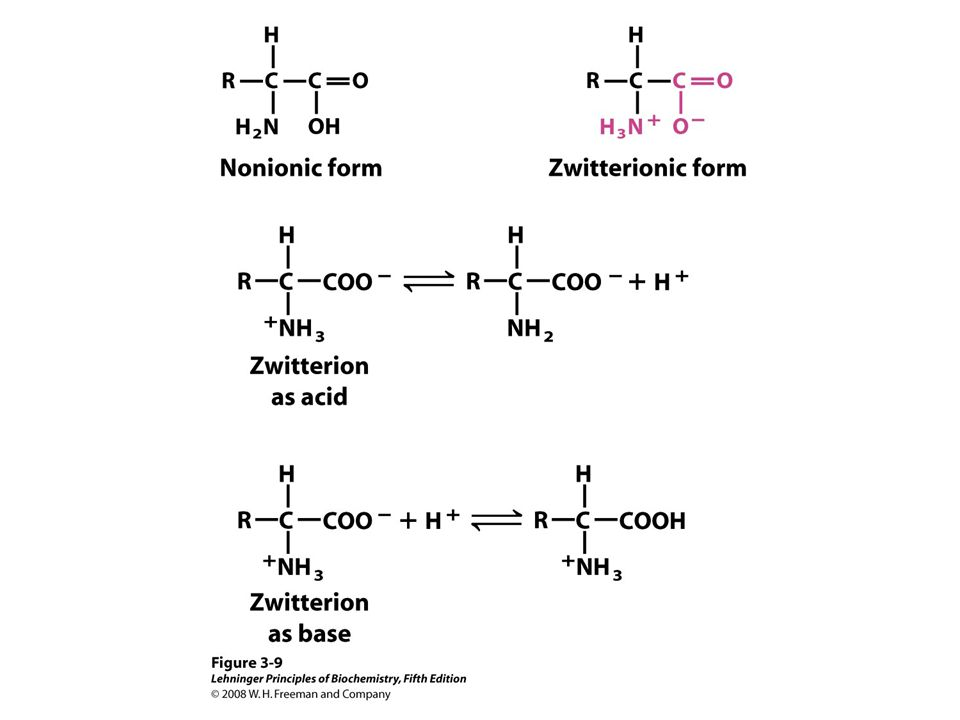 FIGURE 3-9 Nonionic and zwitterionic forms of amino acids