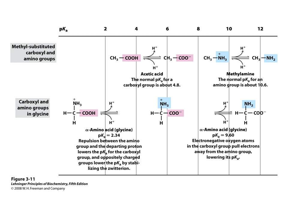 FIGURE 3-11 Effect of the chemical environment on pKa