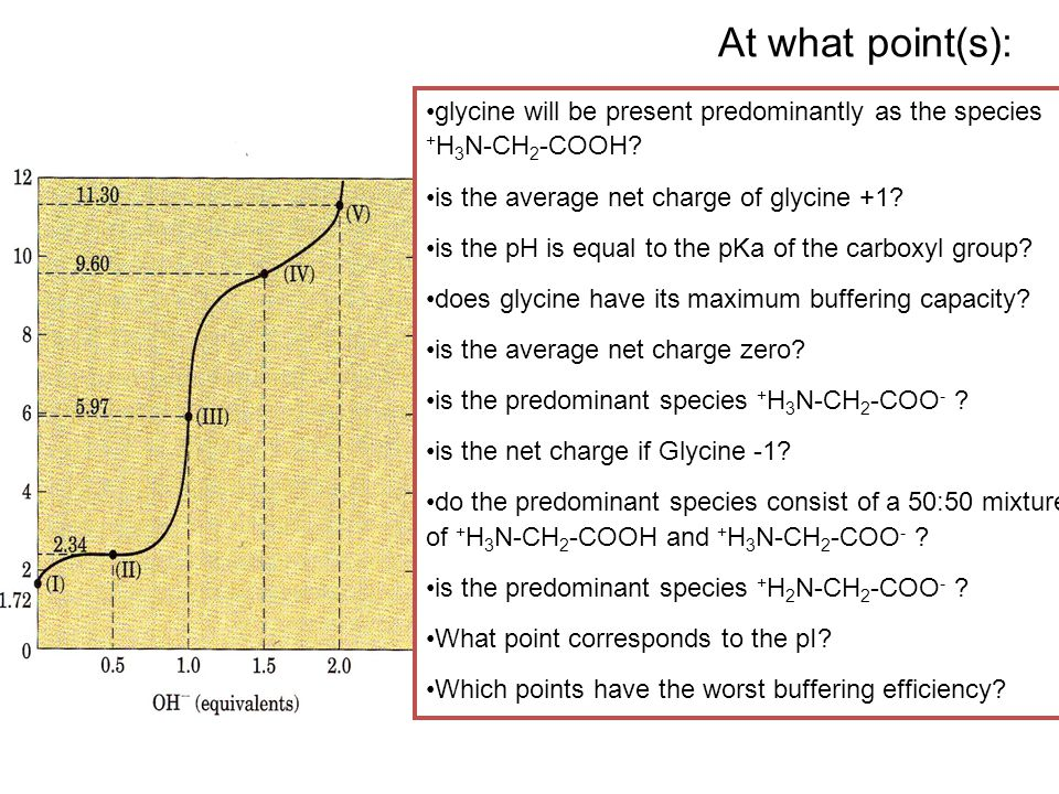 At what point(s): glycine will be present predominantly as the species +H3N-CH2-COOH is the average net charge of glycine +1
