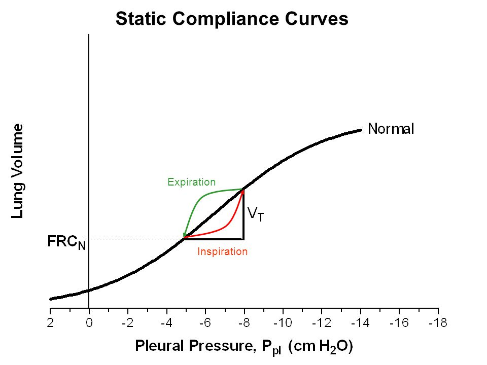 Static Compliance Curves