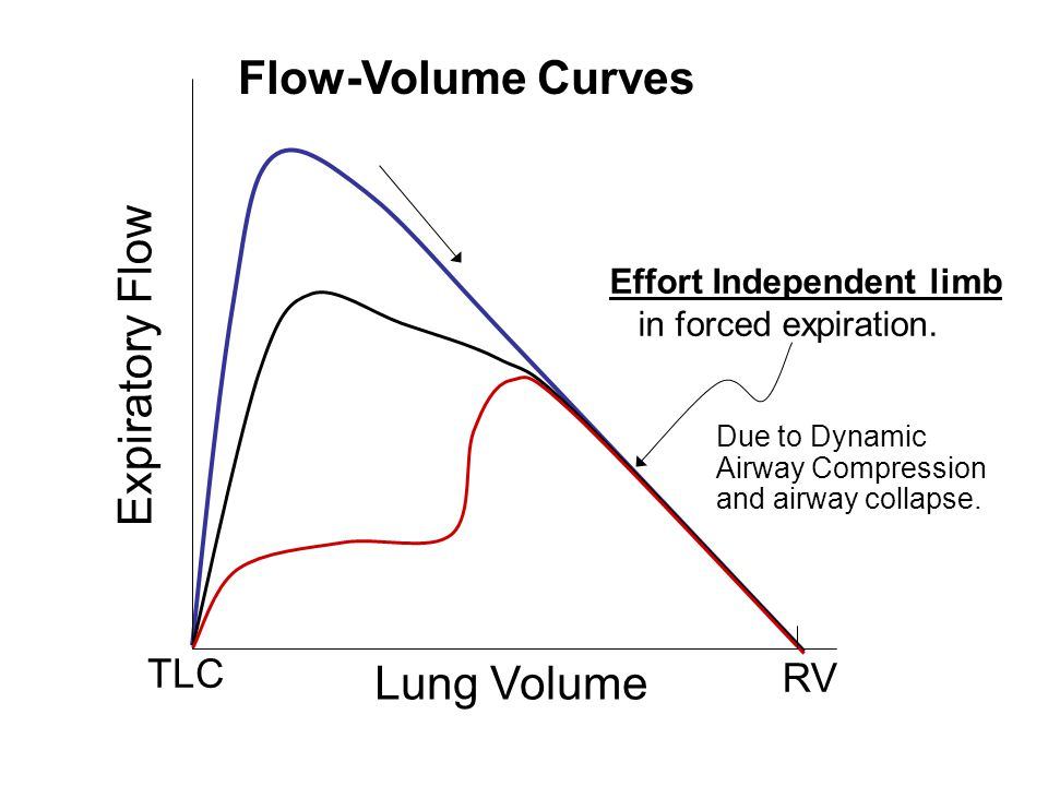 Flow-Volume Curves Expiratory Flow Lung Volume TLC RV