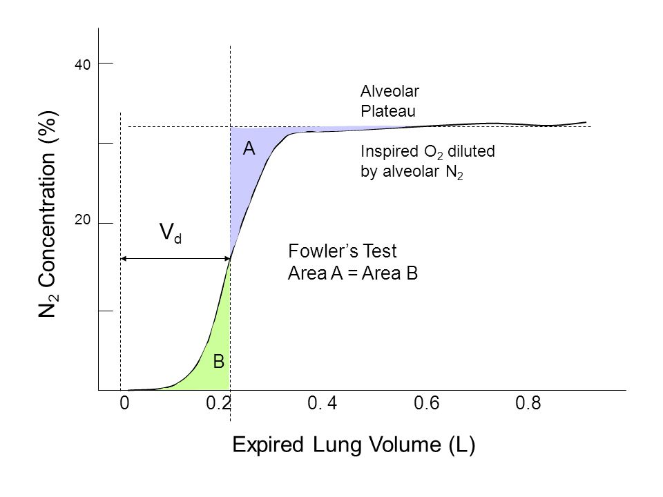 Expired Lung Volume (L) N2 Concentration (%)