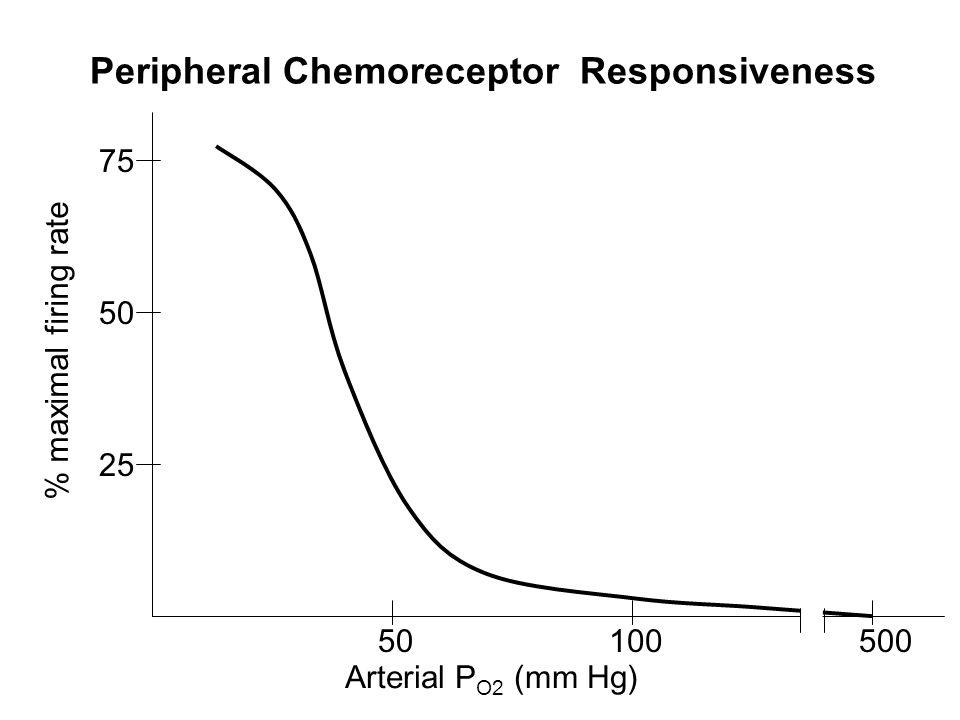 Peripheral Chemoreceptor Responsiveness