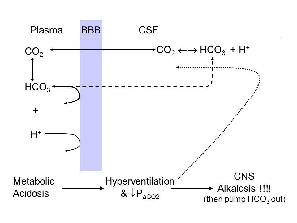 Plasma BBB CSF CO2 HCO3 + H+ CO2  HCO3 + H+ CNS Alkalosis !!!!