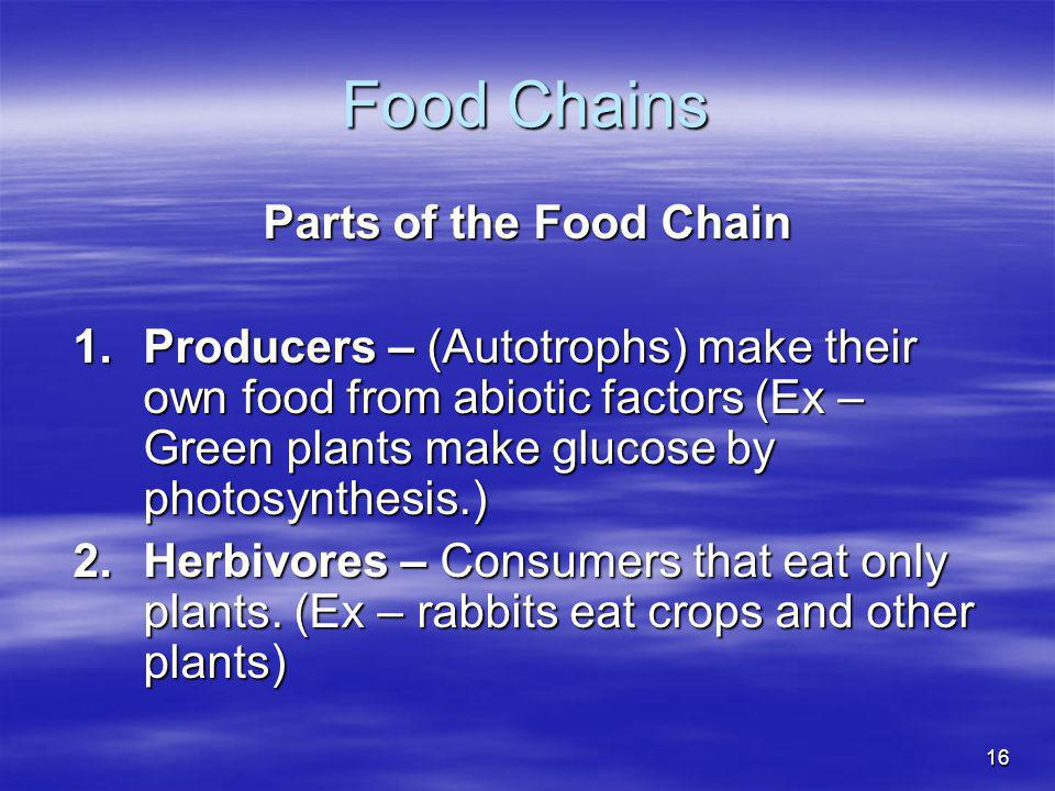 Food Chains Parts of the Food Chain