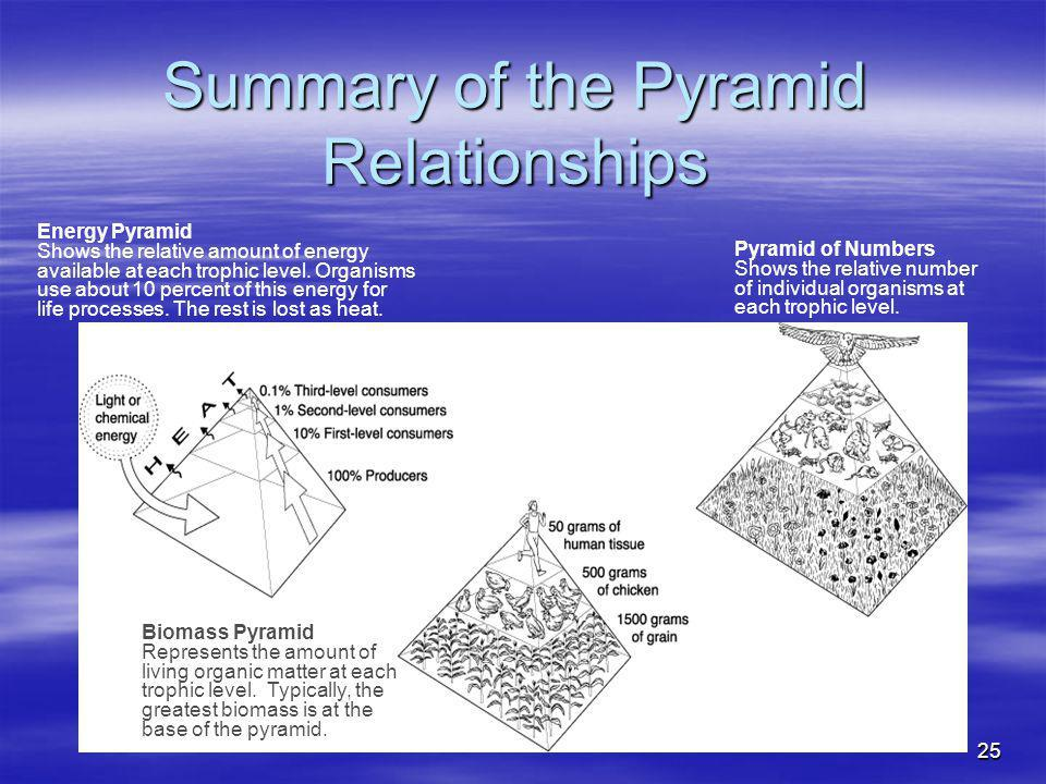 Summary of the Pyramid Relationships