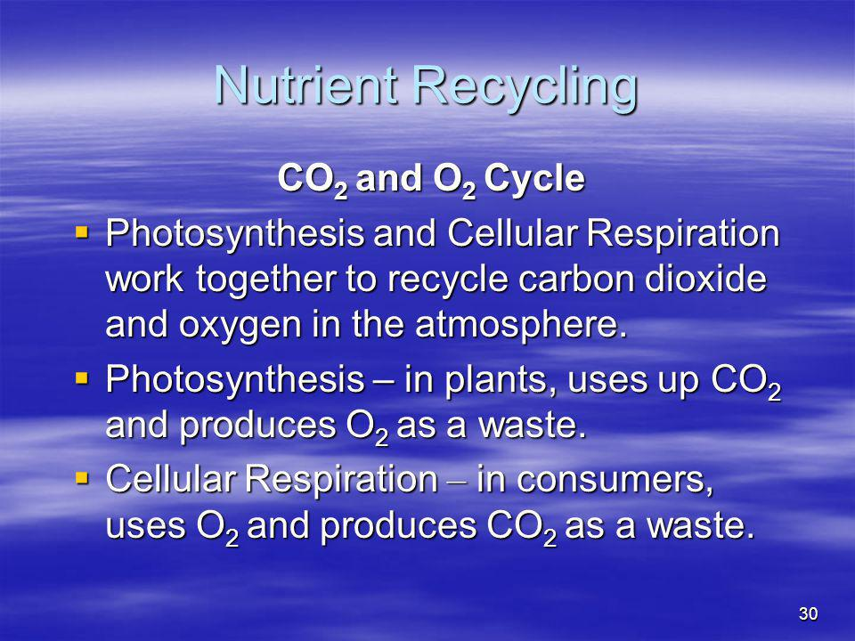 Nutrient Recycling CO2 and O2 Cycle