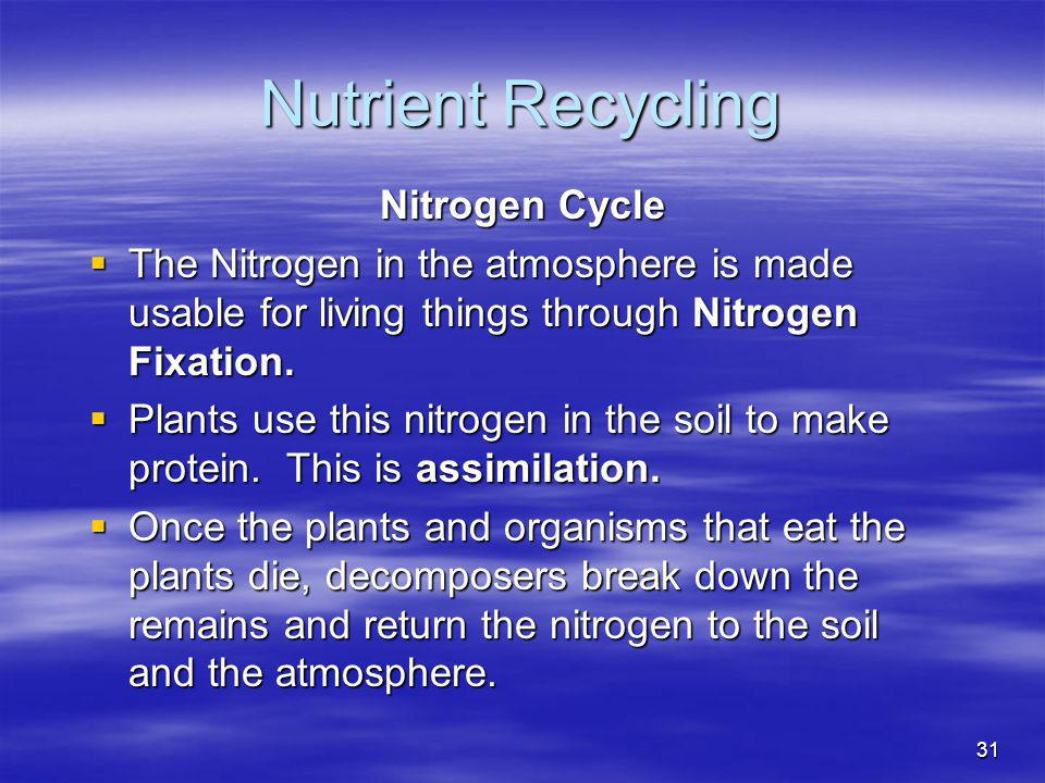 Nutrient Recycling Nitrogen Cycle