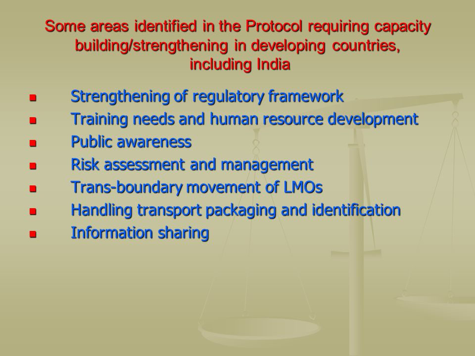 Some areas identified in the Protocol requiring capacity building/strengthening in developing countries, including India