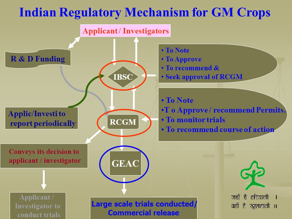 Indian Regulatory Mechanism for GM Crops