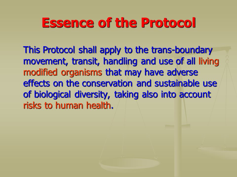 Essence of the Protocol