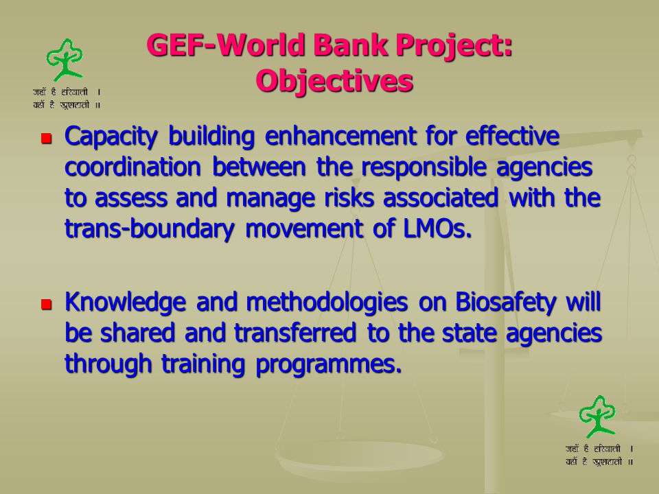 GEF-World Bank Project: Objectives