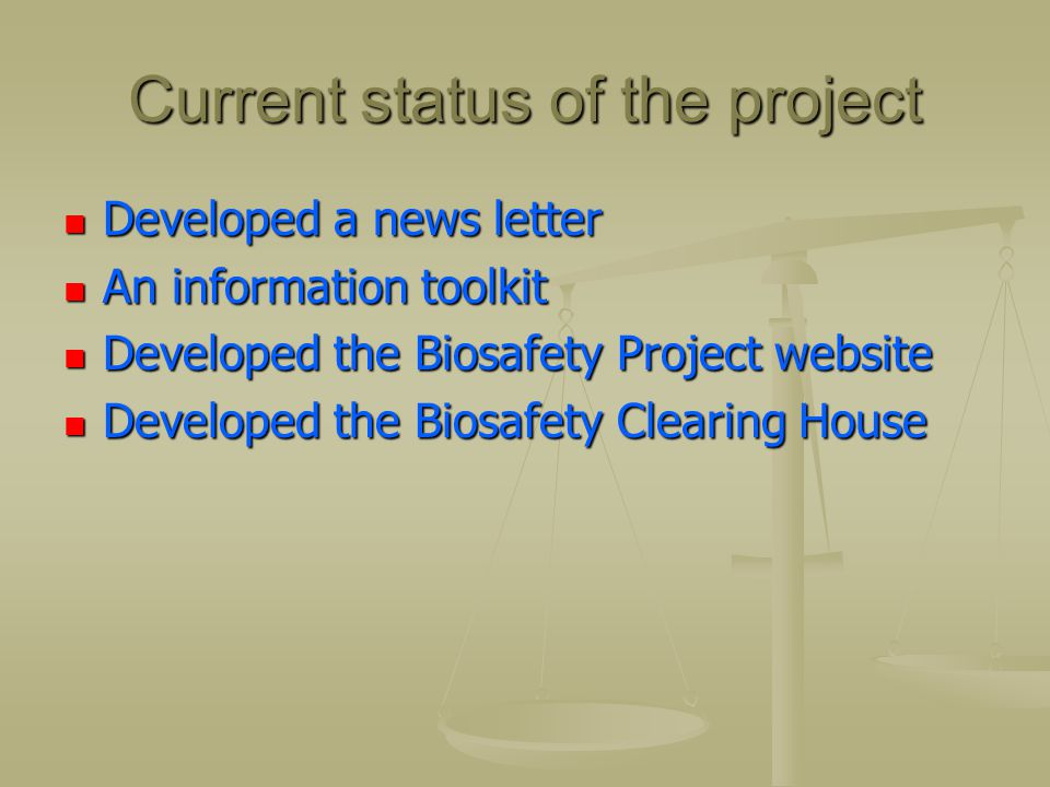 Current status of the project