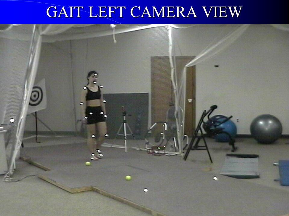 GAIT LEFT CAMERA VIEW