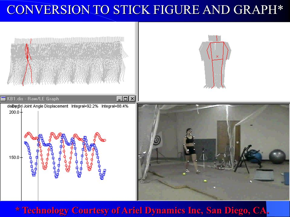 CONVERSION TO STICK FIGURE AND GRAPH*