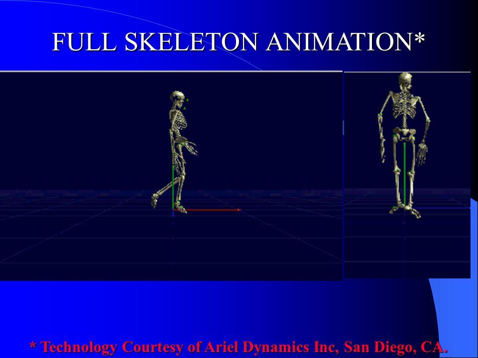 FULL SKELETON ANIMATION*