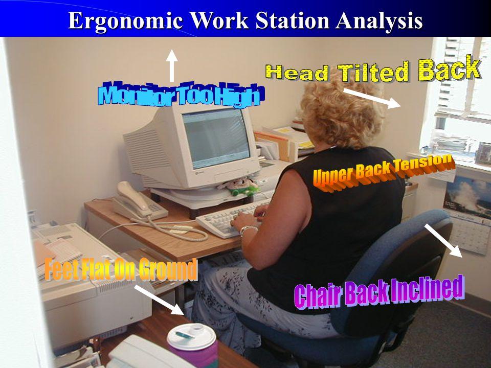 Ergonomic Work Station Analysis