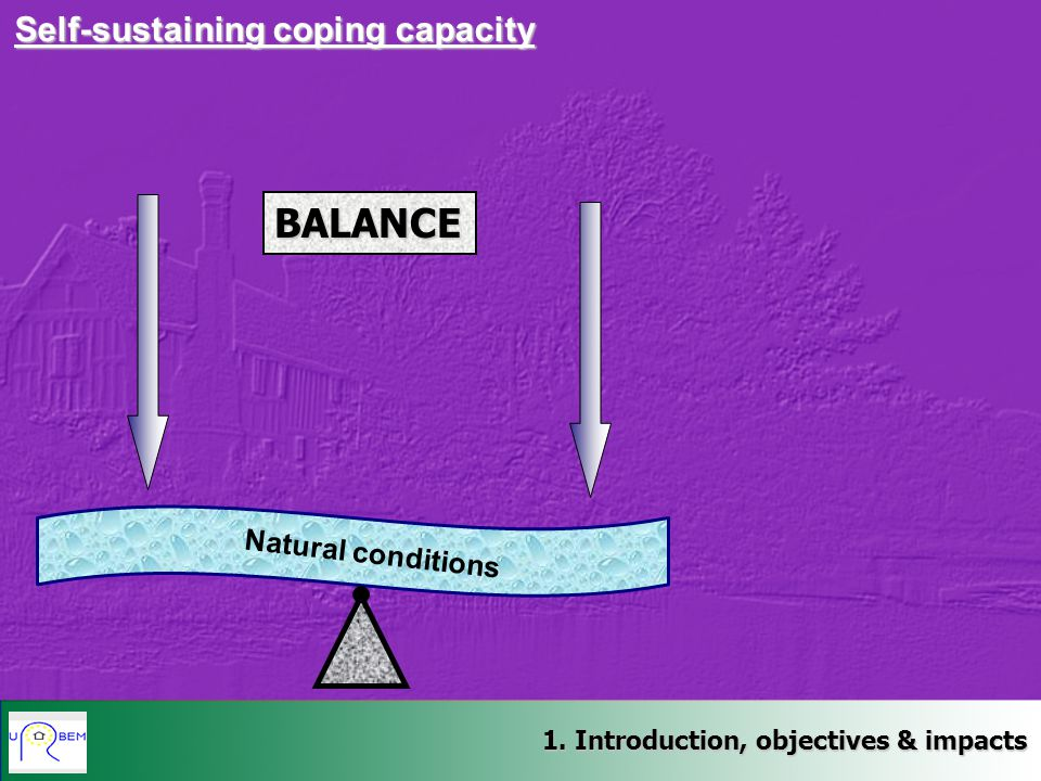 BALANCE Self-sustaining coping capacity Natural conditions