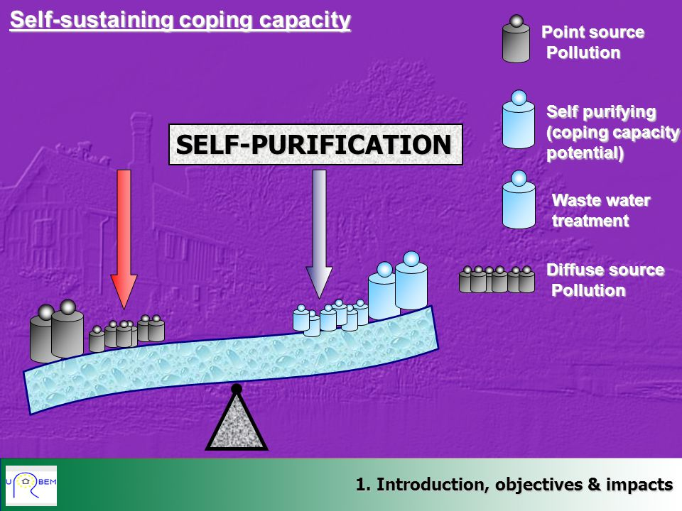 SELF-PURIFICATION Self-sustaining coping capacity Point source