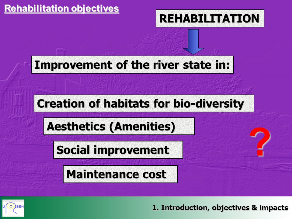REHABILITATION Improvement of the river state in: