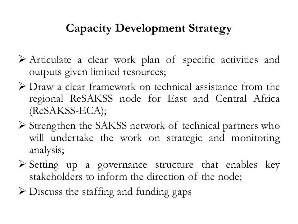 Capacity Development Strategy