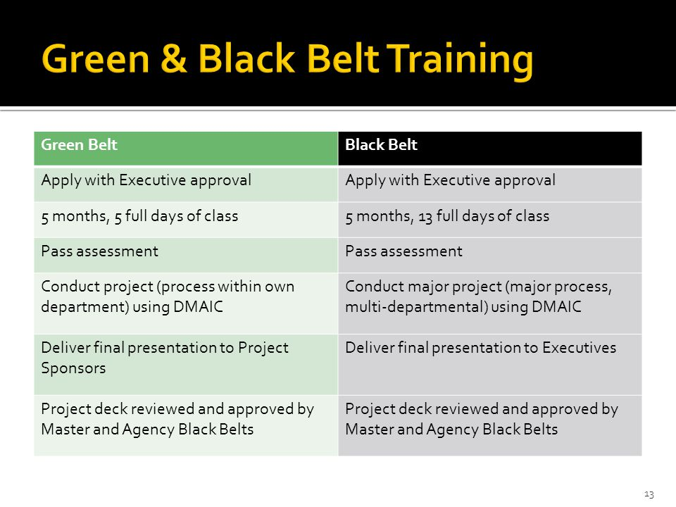 Green & Black Belt Training
