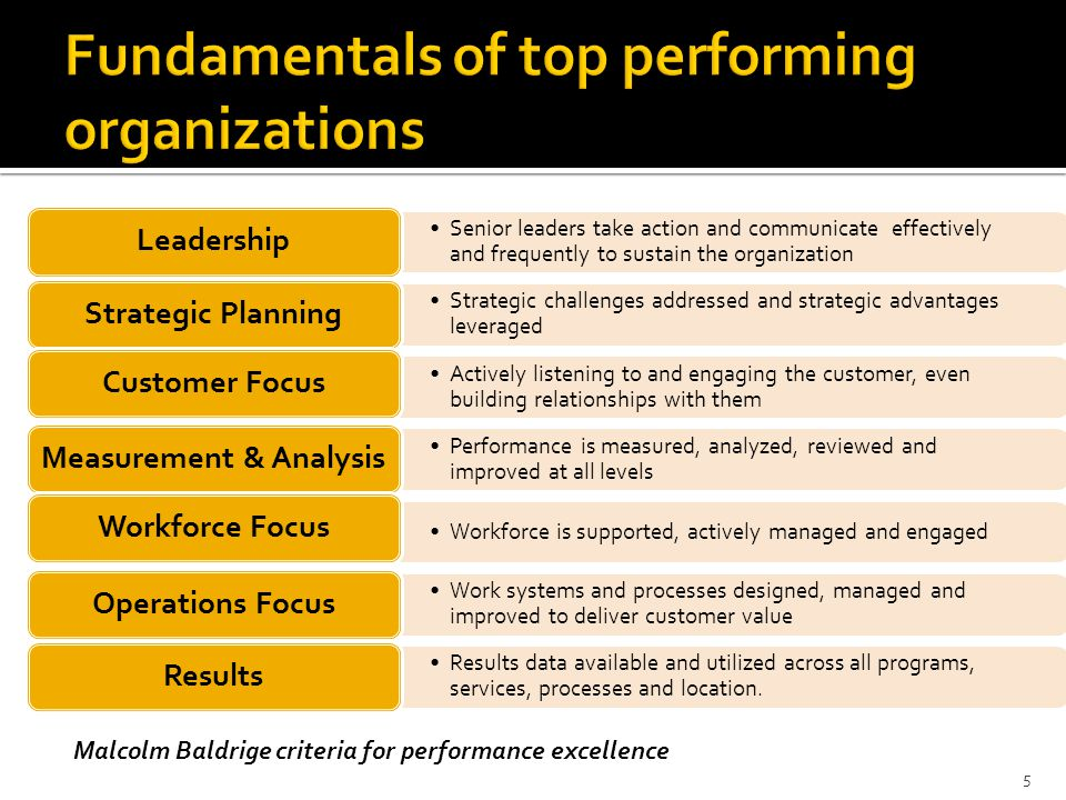 Fundamentals of top performing organizations
