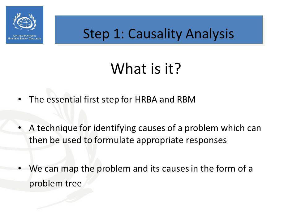 Step 1: Causality Analysis