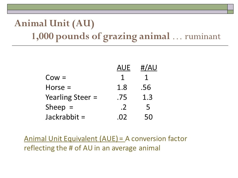 Animal Unit (AU) 1,000 pounds of grazing animal … ruminant