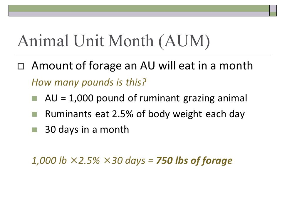 Animal Unit Month (AUM)