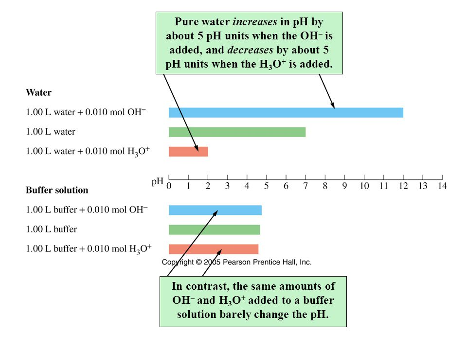 Pure water increases in pH by about 5 pH units when the OH– is added, and decreases by about 5 pH units when the H3O+ is added.