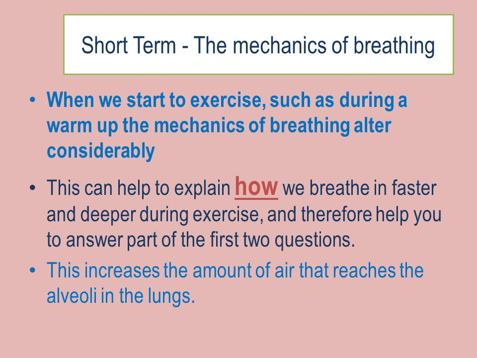 exercise 7 respiratory system mechanics Exercise 7 activity 1 physioex name: exercise 7: respiratory system mechanics: activity 3: effect of surfactant and intrapleural pressure on respiration lab report pre-lab quiz.