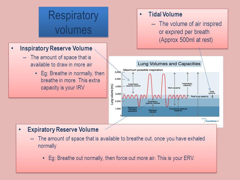 Respiratory volumes Tidal Volume