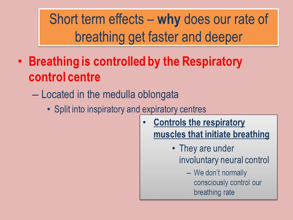 Short term effects – why does our rate of breathing get faster and deeper