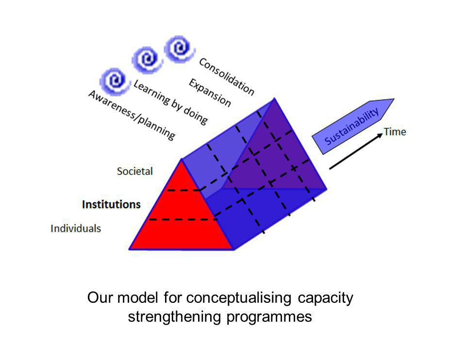 Our model for conceptualising capacity strengthening programmes