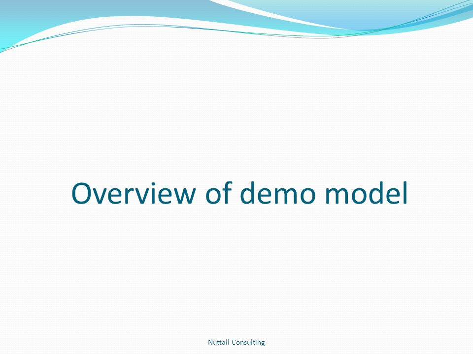 Overview of demo model Nuttall Consulting