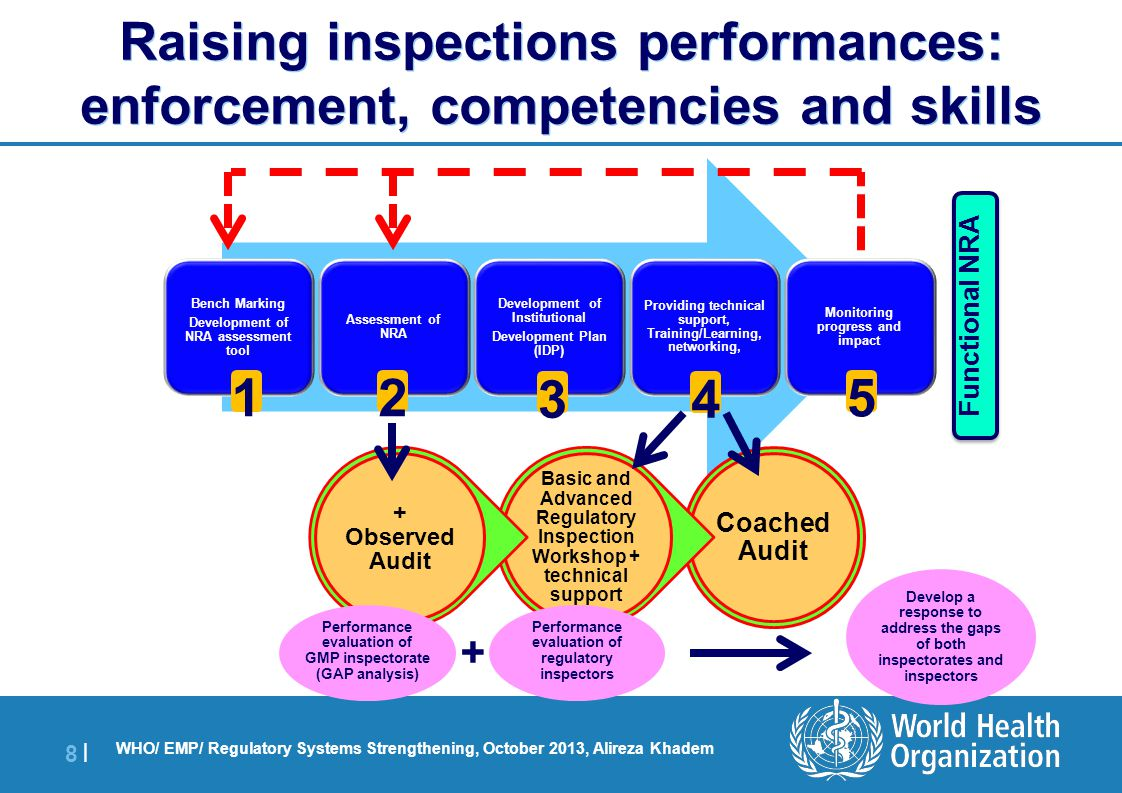 Raising inspections performances: enforcement, competencies and skills