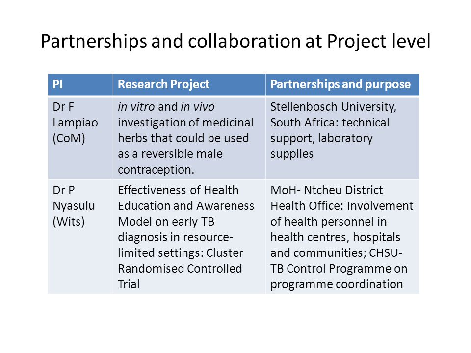 Partnerships and collaboration at Project level