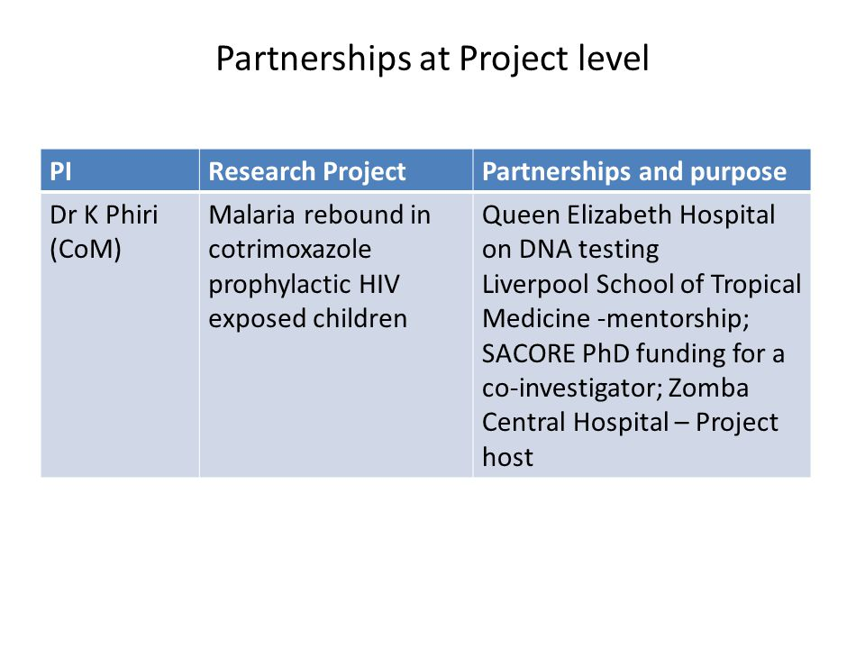 Partnerships at Project level