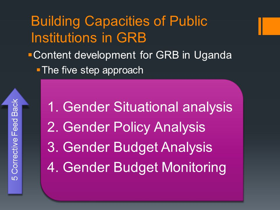 Building Capacities of Public Institutions in GRB